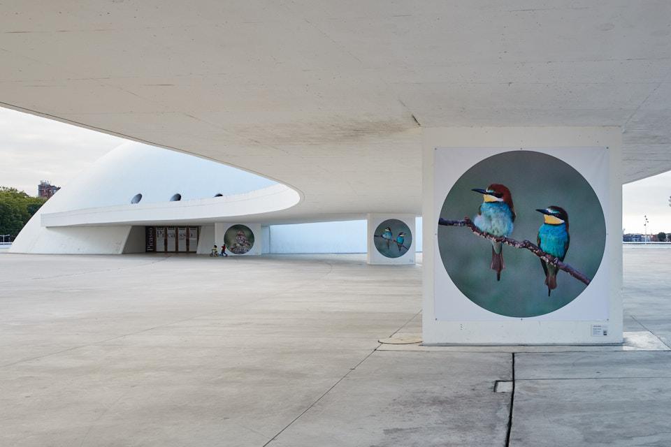 Ruta de Arte de la exposición «Al aire libre»